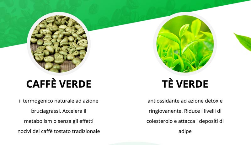Green Coffee & Green Tea Plus: ingredienti